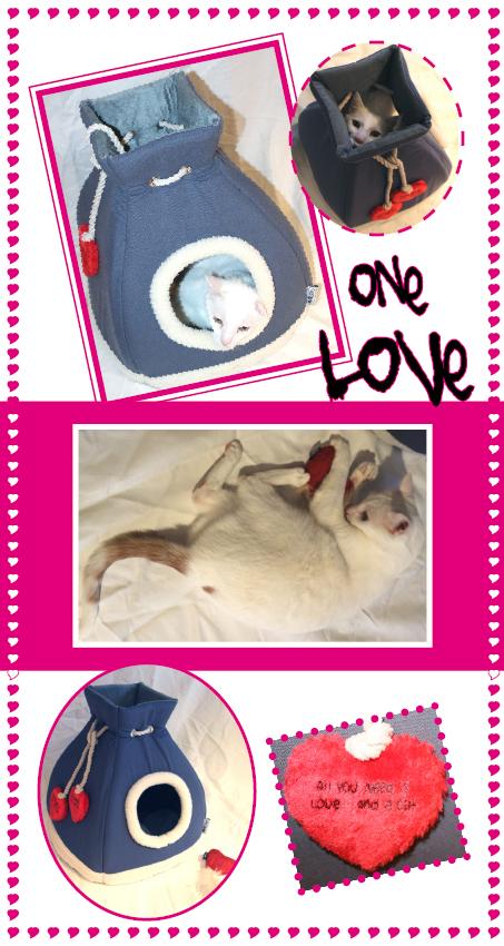 CATastic_One Love - Die eine Liebe